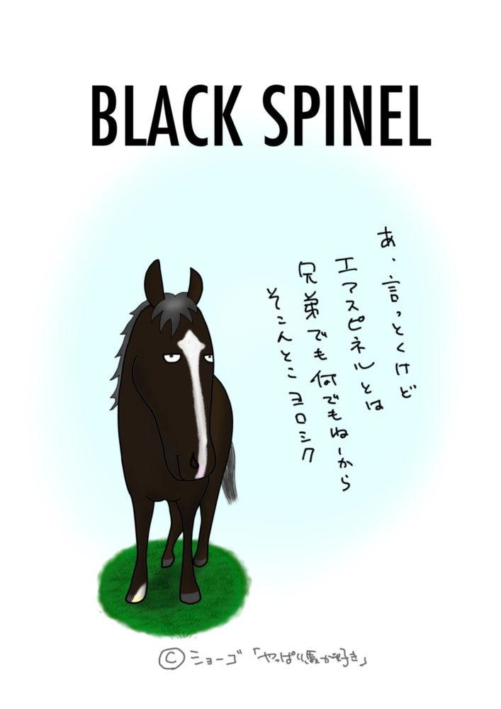 ブラックスピネル