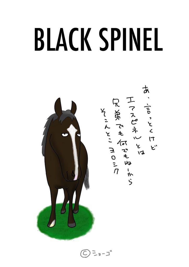 ブラックスピネルさん