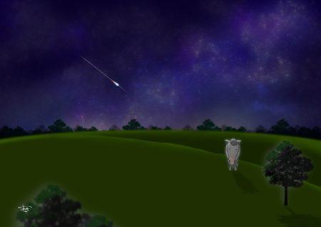 夜空に放牧