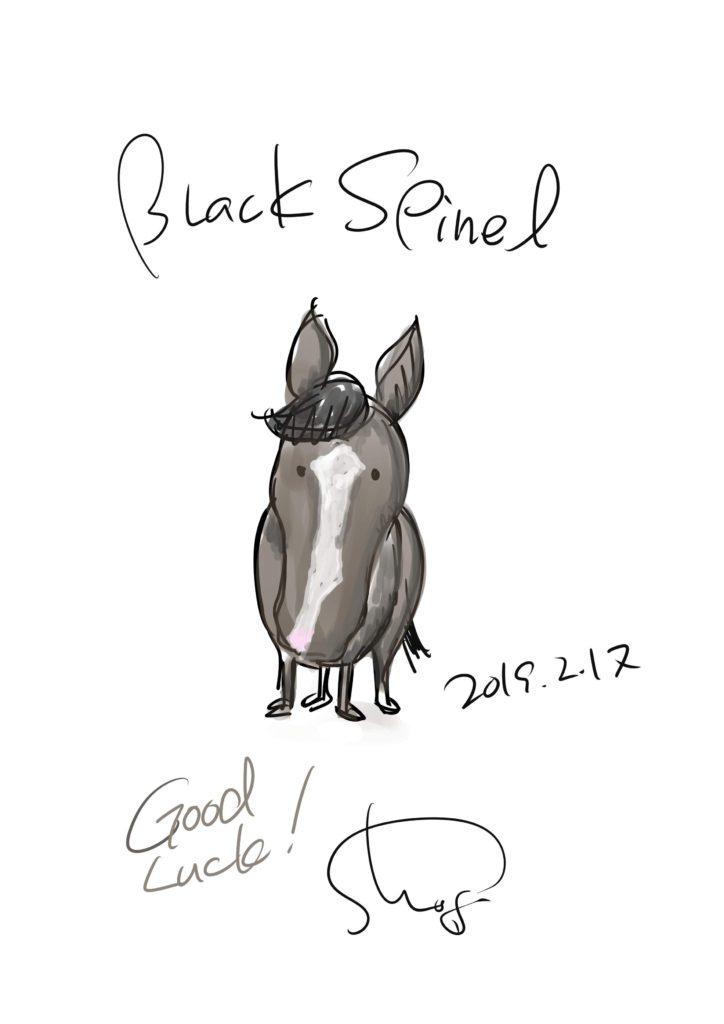 【ブラックスピネル】イタズラ描き