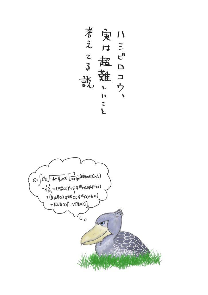 ハシビロコウと数式