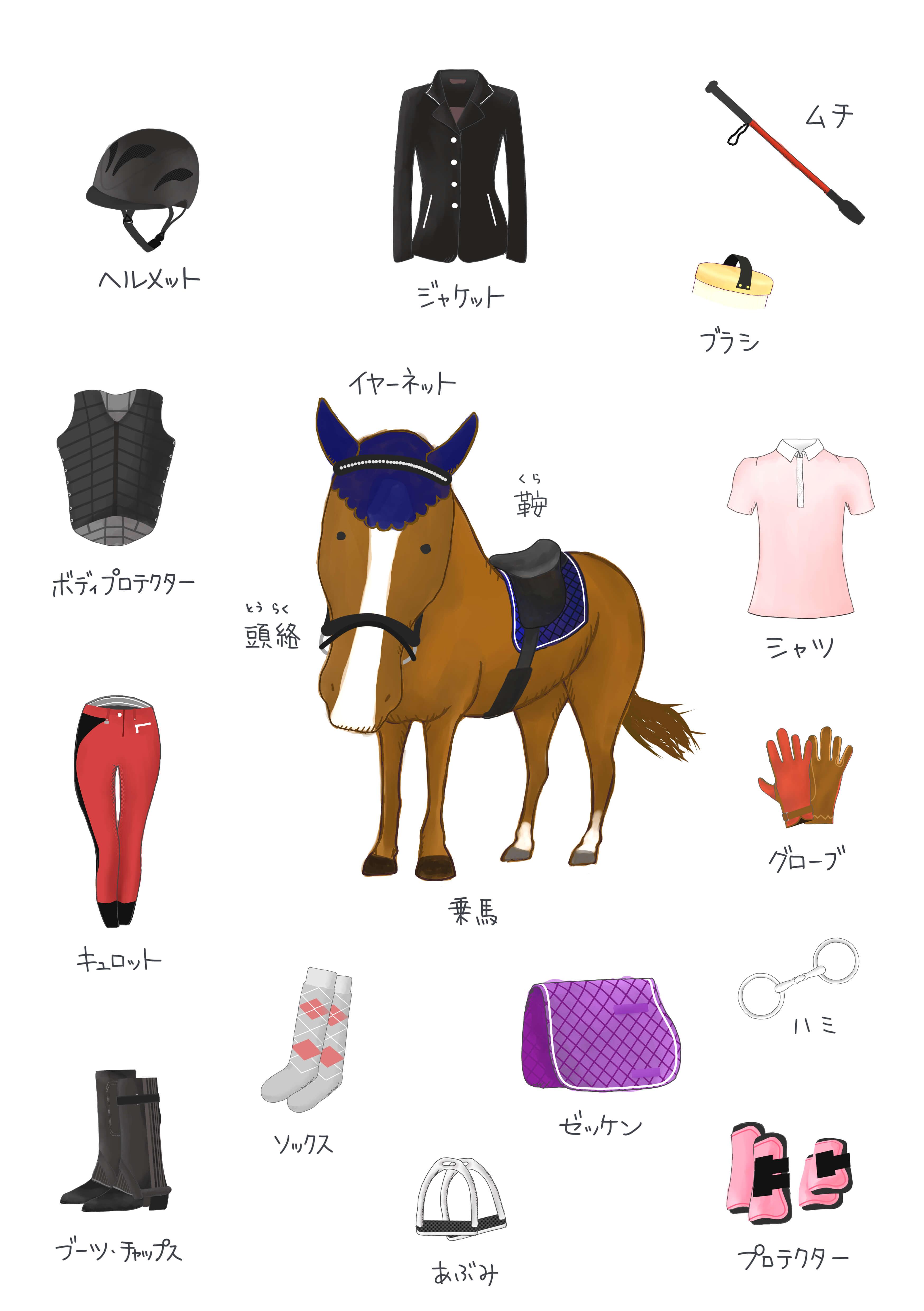 乗馬用品プラス